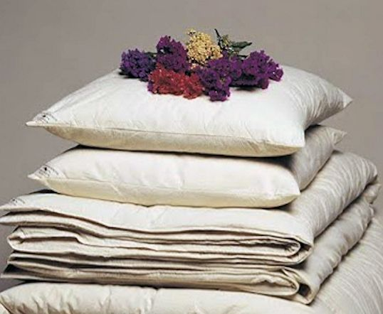 Organic Cotton - Filled Pillows